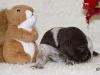 01.30 Uhr - Debora - die Kleine mit dem Eichhörnchen