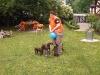 Jetzt noch zwei bis drei Ballons .....