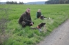 Festus und Falko beim Warten auf den nächsten Suchengang