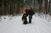 Braver Hund - bringt den Fuchs