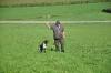 Dax beim Vorstehen an Hühnern
