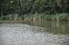Ein Ufer erreicht - Richtungswechsel zum anderen Ufer