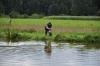 Gewässer gewechselt - Elli bringt ihre Ente zu mir statt zu Frauchen
