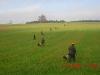 Ein Feldtrieb brachte dann die Hasenstrecke...