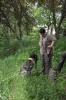 Ü-Tag-Kersbach: Dax beim Bringen der Ente