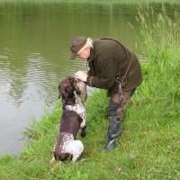 Falko beim Entenapport - braver Hund