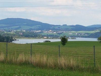 Blick auf den Wallersee/Österreich