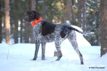 Fiona aus dem verschneiten Finnland