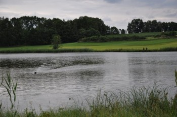 Schicken zur anderen Uferseite